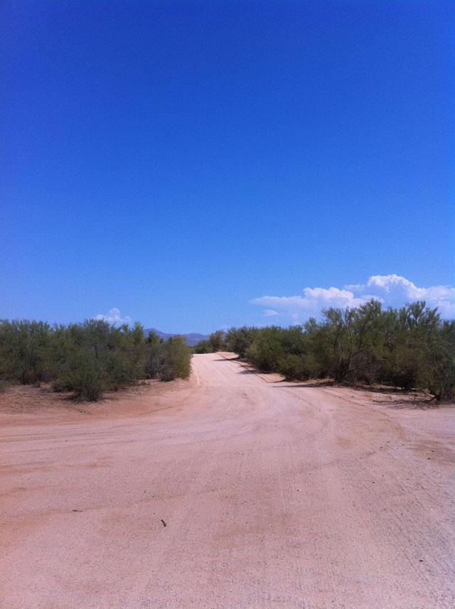 Scottsdale Sandy Desert