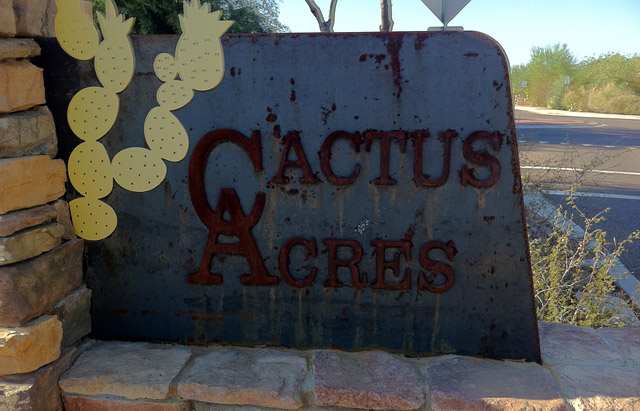 Cactus Acres Subdivision | North Scottsdale, AZ