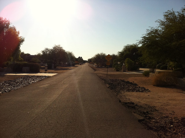 The narrow roads of Cactus Acres.
