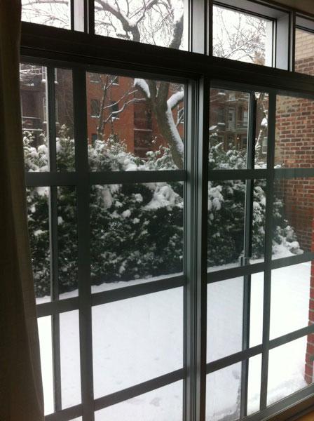 Snow in November Montreal, Canada.