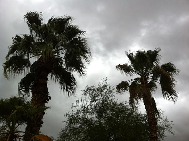 Scottsdale Rain