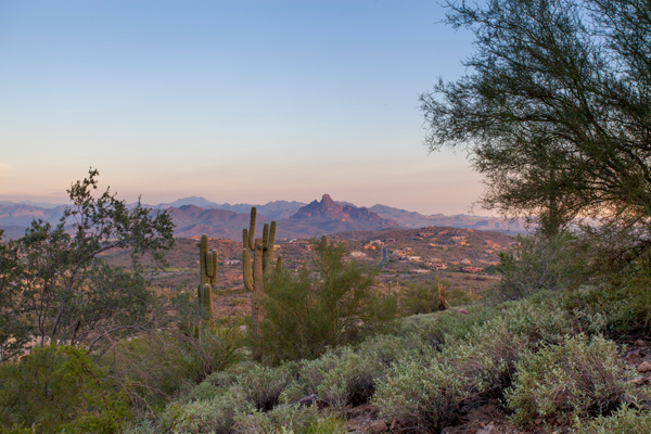 Land For Sale In Fountain Hills Arizona | 11111 N Viento Court Lot#93 Fountain Hills Arizona 85268| Photo Credit: The Marta Walsh Group