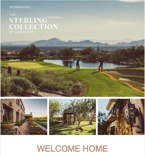 The Sterling Collection At Silverleaf in Scottsdale Arizona | via The Marta Walsh Group